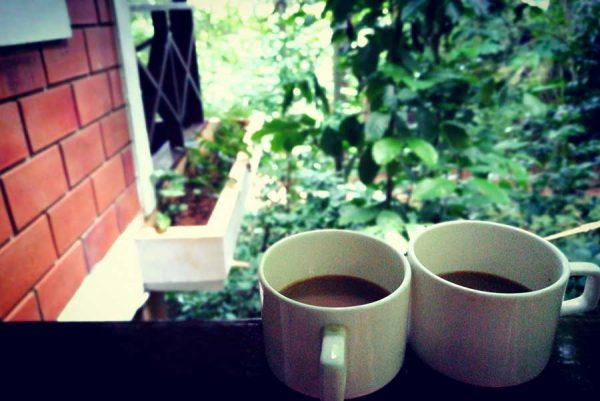 Filter coffee in the balcony of our cottage in Coffee Acres Plantation, Wayanad
