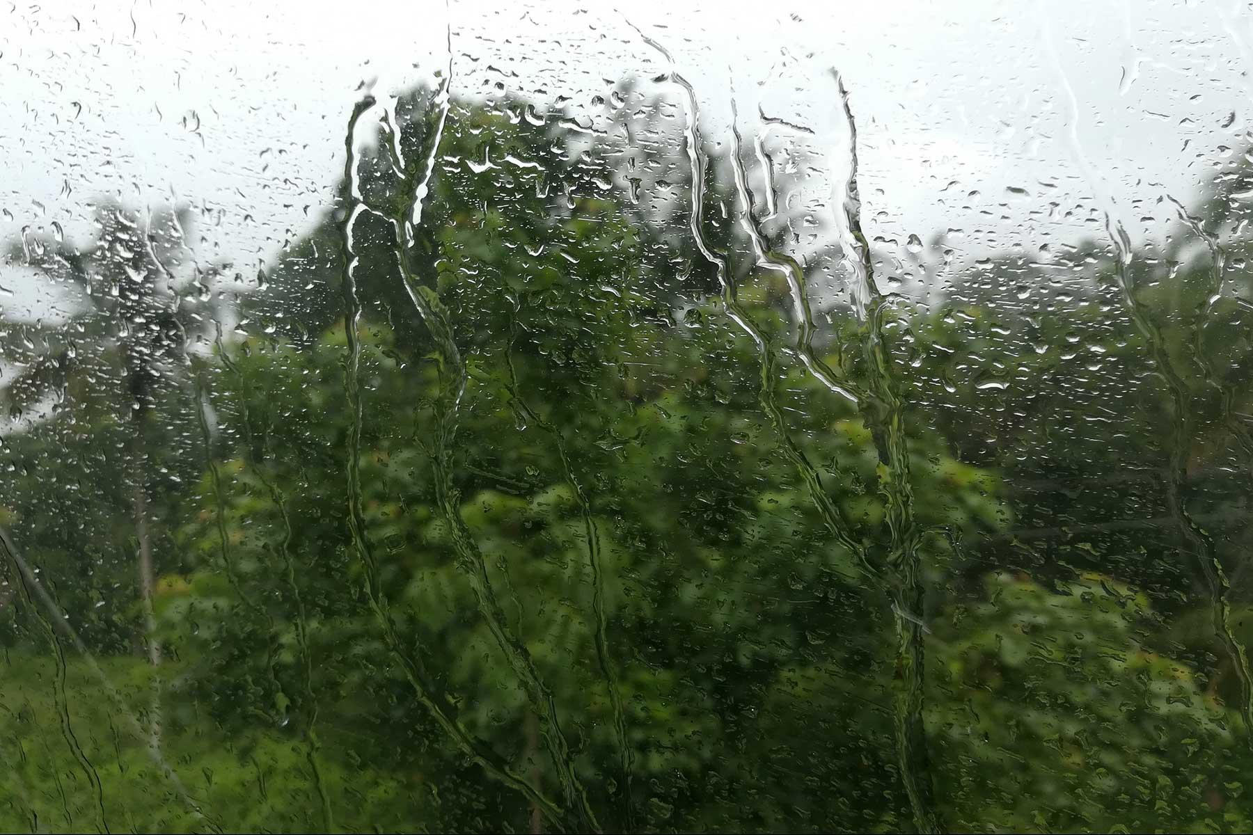 Rain on the way to Wayanad